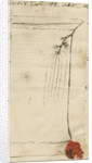 Freshwater hydra by Charles John Bentinck