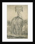 Indian elephant by Andreas Lorenzen Rothgiesser