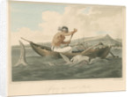 'Javanese and wounded Shark' by Thomas Medland