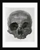 George Buchanan's skull by Unknown