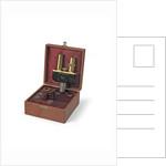 Binocular microscope eyepieces by Ernst Leitz GmbH