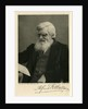 Portrait of Alfred Russel Wallace by Art Reproduction Company