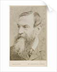 Portrait of John Attfield (1835-1911) by Maull & Fox