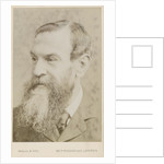 Portrait of John Attfield (1835-1911) by Maull & Fox
