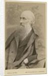 Portrait of John Beddoe (1826-1911) by Maull & Fox