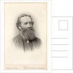 Portrait of William Henry Besant (1828-1917) by Maull & Fox