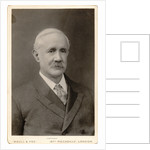 Portrait of Henry Taylor Bovey (1850-1912) by Maull & Fox