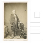 Portrait of John Bowring (1792-1872) by Maull & Polyblank