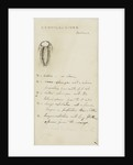 Remopleurides, genus of trilobite by Henry James