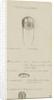 Trinucleus, genus of trilobite by Henry James