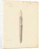 Lumbricus terrestris [Earthworm] dissected by William Clift