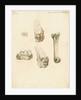 Fossil teeth and bones of boar by H O'Neil