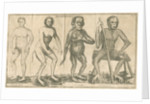 Four 'humanoid' figures from Linnaeus's 'Academic delights' by Anonymous