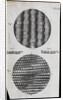 Microscopic view of silk and taffeta by Robert Hooke