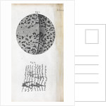 Microscopic views of charcoal by Robert Hooke