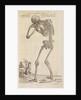 'Corporis humani ossa, posteriori facie proposita' by Studio of Titian