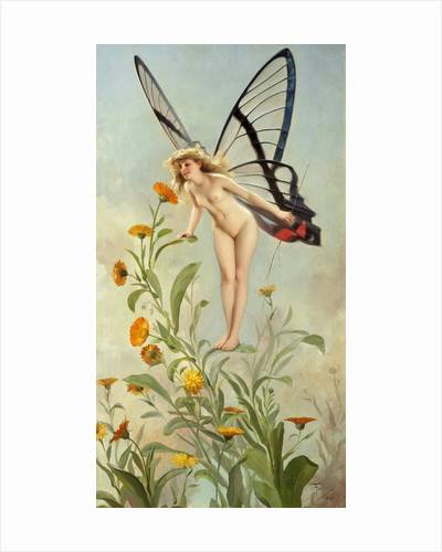 The Butterfly by Luis Ricardo Faléro
