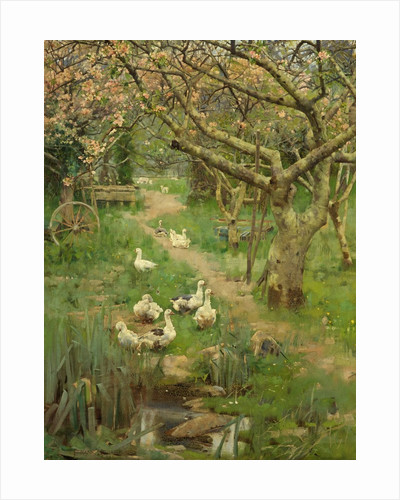 In a Cornish Orchard by Frank Richards