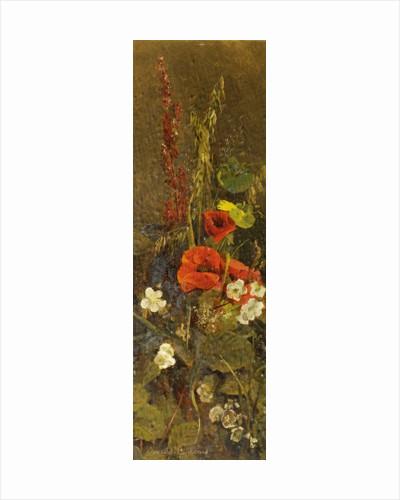Autumn Flowers by Amelia Goddard