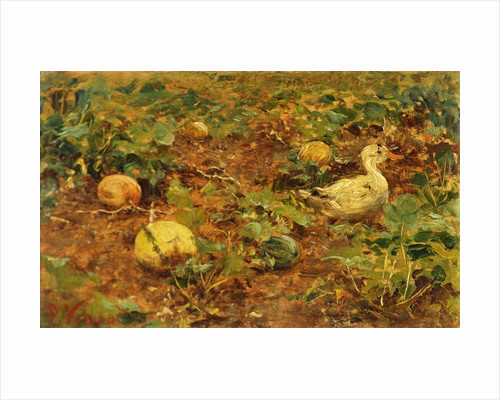 Vegetable Patch with Duck by Francesco Vinea