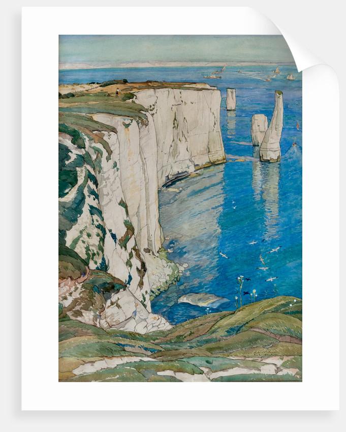 Chalk Cliffs near Swanage by Leslie Moffat Ward