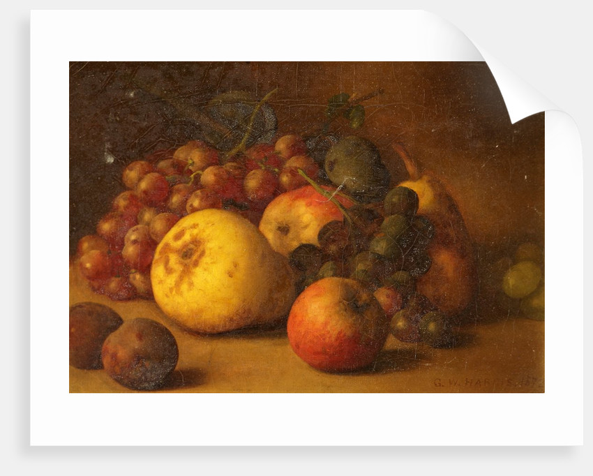 Still Life with Pear Apples Grapes and Plums by George Walter Harris