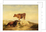 Cows by Thomas Sidney Cooper