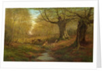 Burnham Beeches by William Luker