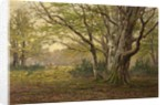 A New Forest Glade by F. Golden Short