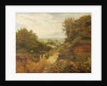 View from Leith Hill by Frank Walton