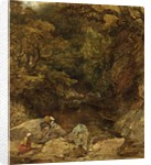 The Waterfall by Alfred Joseph Woolmer