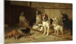The Dogs' Home by Walter Hunt