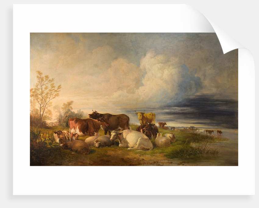 Cattle and Sheep at Rest in Meadows by Thomas Sidney Cooper