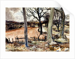 Ploughed Fields at Beachcliff, Staffordshire by Reginald Haggar