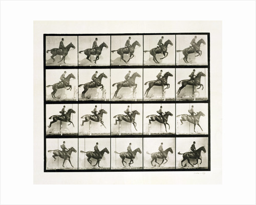 Man and horse jumping a fence by Eadweard J Muybridge