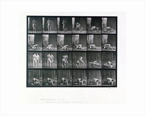 Two men wrestling by Eadweard J Muybridge