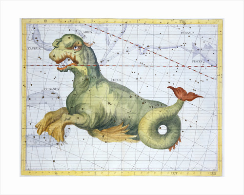 Constellation of Cetus (the Whale) by Anonymous