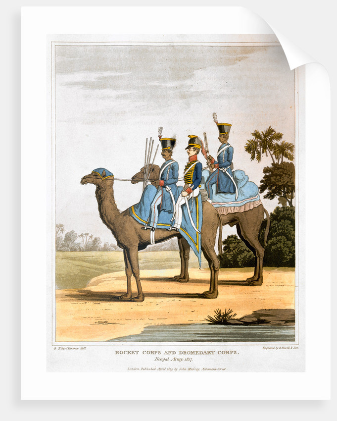 Rocket Corps and Dromedary Corps by Havell & Son