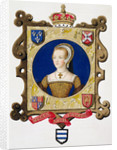 Katherine Parr, sixth wife and Queen of Henry VIII by Sarah