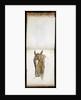 Horse's Head by Edwin Henry Landseer