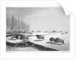 A buffalo pound by Edward Finden
