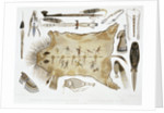 Indian Utensils and Arms by A Zschokke