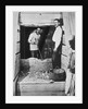 Howard Carter and a colleague excavating a tomb in the Valley of the Kings by Harry Burton
