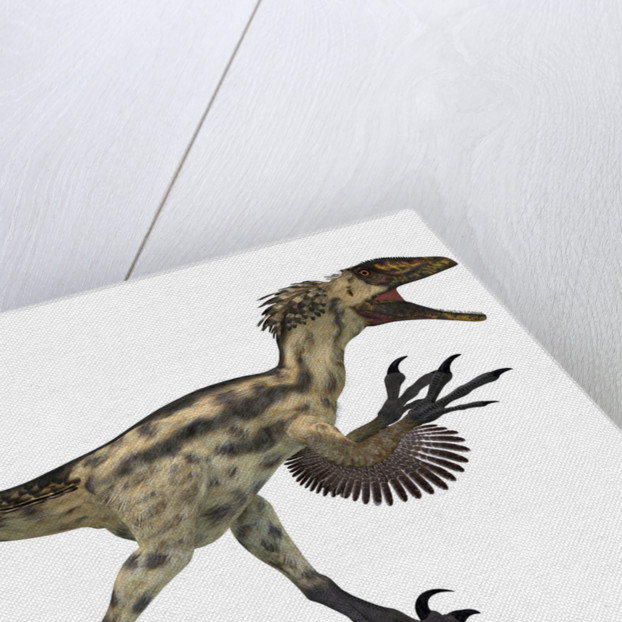 Deinonychus, a carnivorous dinosaur from the early Cretaceous Period. by Corey Ford