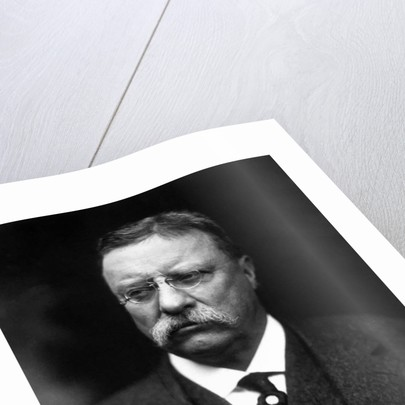 Digitally restored vector portrait of Theodore Roosevelt. by John Parrot