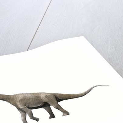 Aragosaurus ischiaticus, sauropod from the Early Cretaceous Period. by Nobumichi Tamura