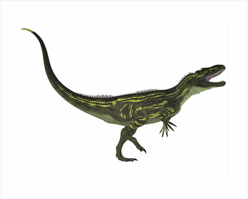 Torvosaurus, a large theropod dinosaur from the Jurassic Period. by Corey Ford
