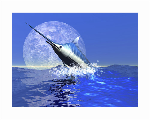 A blue marlin bursts from the ocean in a great splash. by Corey Ford