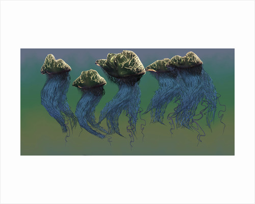 Group of Portuguese Man O' War. by Corey Ford