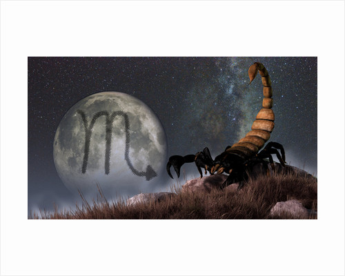 Scorpio is the eighth astrological sign of the Zodiac. by Daniel Eskridge